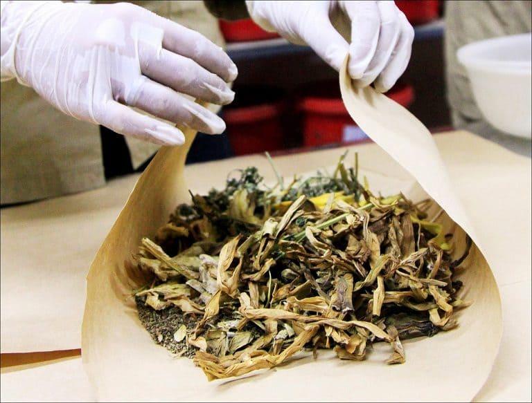 Thuốc Đông y chữa bệnh bằng các thảo dược tự nhiên kết hợp an toàn và lành tính