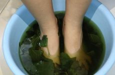 Ngoài cách uống bạn có thể nấu nước lá lốt để ngâm chân cũng giúp giảm đau nhanh