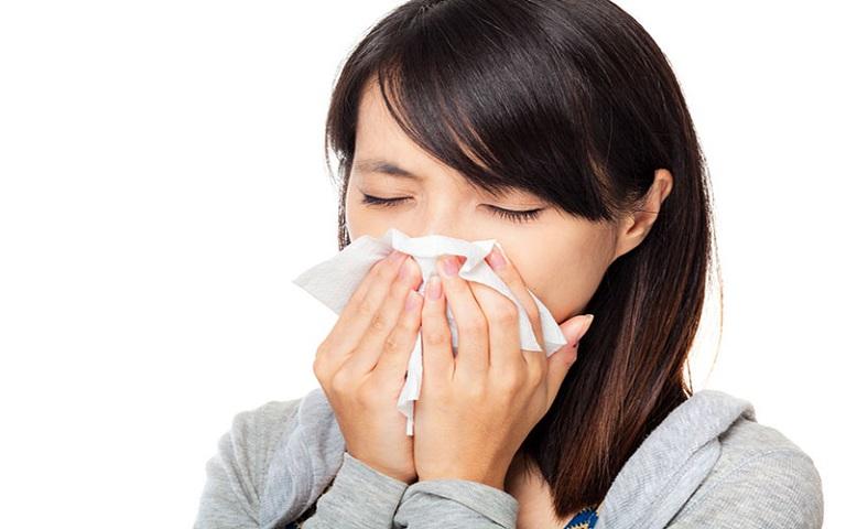 Chữa viêm mũi dị ứng bằng lá lốt được xem là phương pháp phổ biến hiện nay