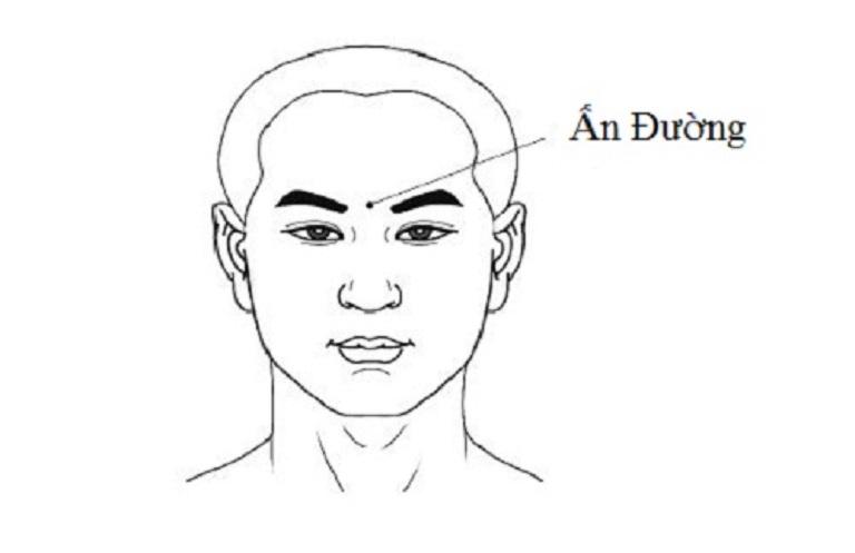 Khi bấm huyệt ấn đường có thể giúp cơ thể giải phóng nhanh chóng dịch nhầy trong mũi