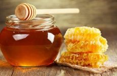 Theo quan niệm Đông y, mật ong có tính bình, tác dụng chính là bổ phế, tiêu viêm và giải độc rất tốt
