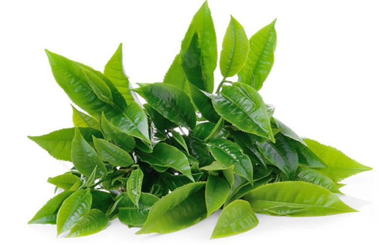 Mẹo dân gian tại nhà sử dụng các loại thảo dược tự nhiên dễ kiếm, lành tính và có khả năng kháng khuẩn, tiêu viêm