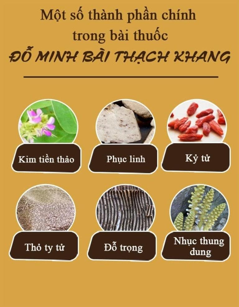 Những vị thuốc quý góp mặt trong bài thuốc Đỗ Minh Bài Thạch Khang