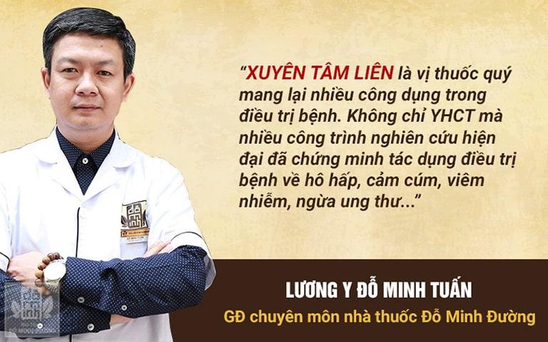 Lương y Đỗ Minh Tuấn nói về tác dụng của xuyên tâm liên